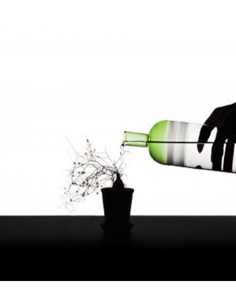 ICHENDORF Bouteille Tequila Sunrise gris fumée vert design mist o