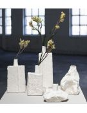 SERAX Vase Eucaplyptus & Acacia modèle 3