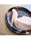 BOLD MONKEY Applique mural Birds