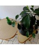 Brocante vintage porte plantes