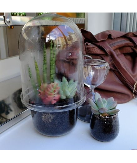 serax Mini terrarium en verre transparent jardin interieur green addict