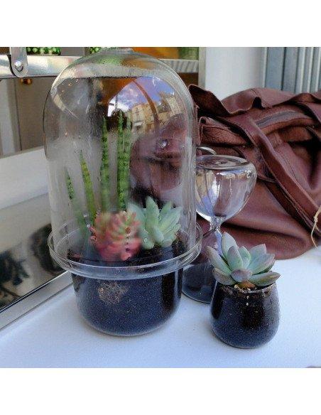 SERAX Mini terrarium en verre