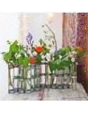 Tse TseTube de rechange vase d'avril - petit modèle