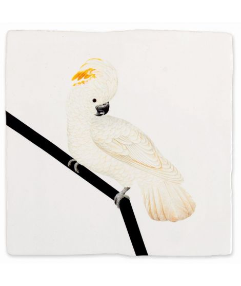 "STORYTILES Carreau de céramique ""White cockatoo"" oiseau blanc"