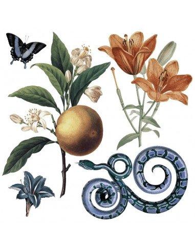 TATTOO KAPRIS Tatouages éphémères Eden Garden